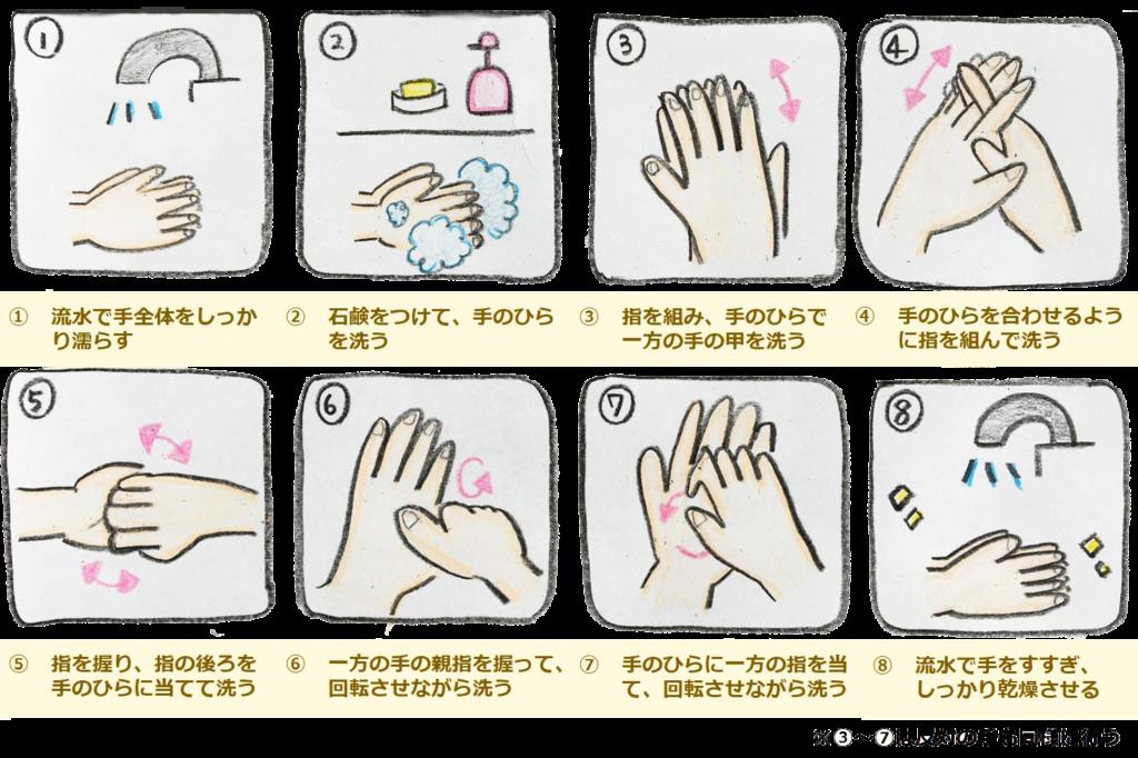 正しい 手洗い の 仕方